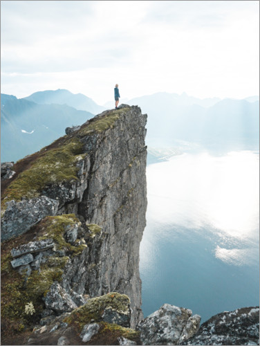 Premium poster The cliff above the fjord