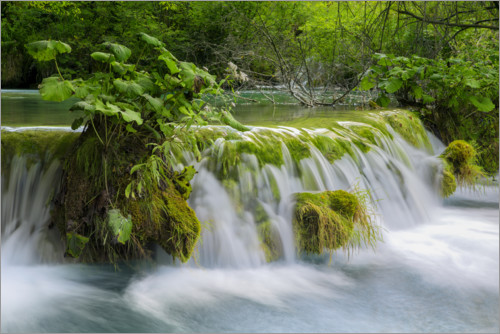 Premium poster Waterfall in the fairy forest