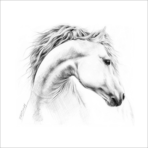 Wall sticker Horse head