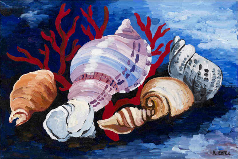 Premium poster Still life with shells