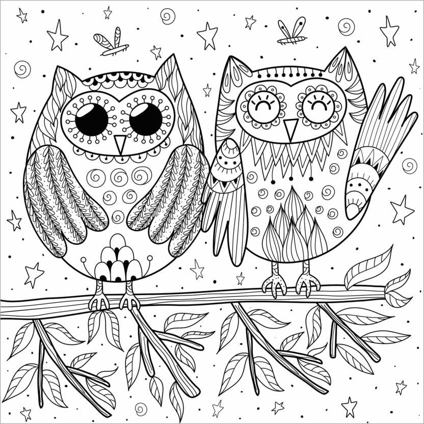 Colouring poster Pair of owls
