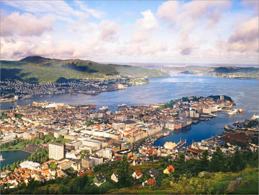 Premium poster From Mount Floyen to the old town of Bergen, Norway