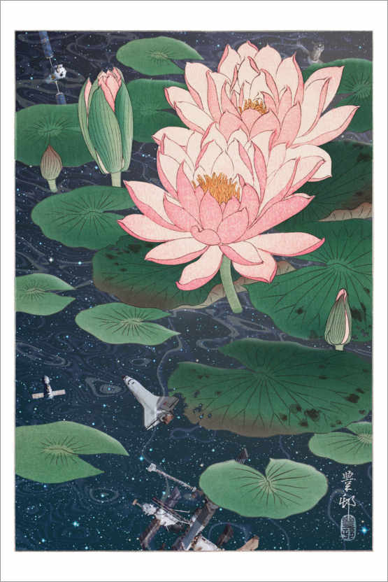 Premium poster Water lilies in space