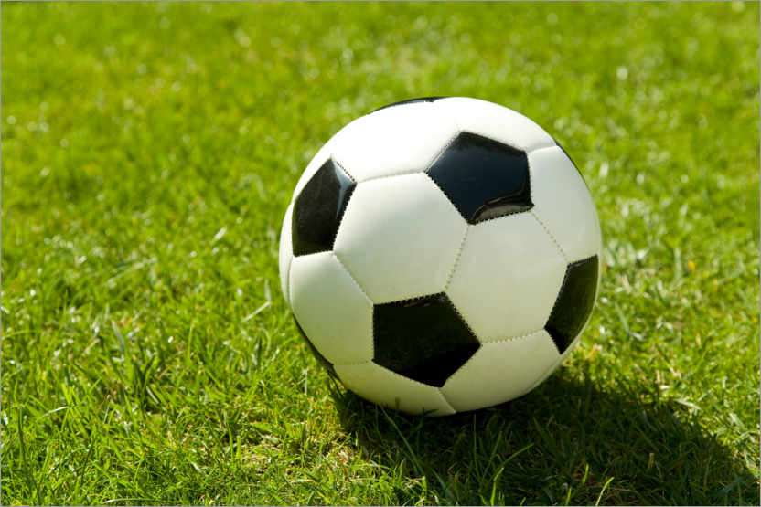 Premium poster Soccer ball on green lawn