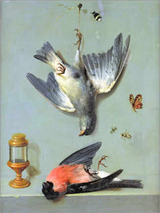 Aluminium print  Still life with birds and insects - Jean-Baptiste Oudry