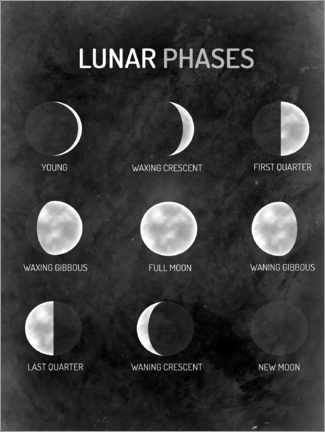 Foam board print  Moon phases - English - MiaMia