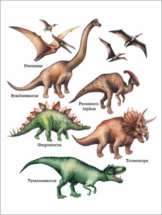 Acrylic print  The names of the dinosaurs