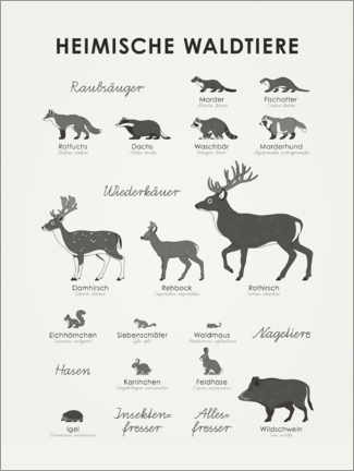 Premium poster Native forest animals (German)