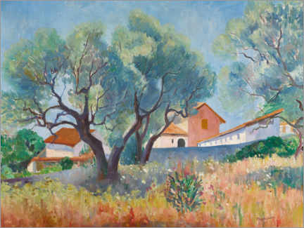 Premium poster  Olive trees in Sanary - Henri Manguin