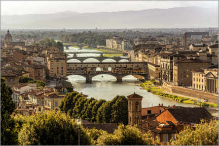 Gallery print  Ponte Vecchio, Florence - Martin Wimmer
