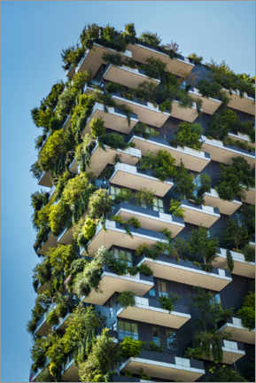 Wood print  Tree Houses Vertical Forest - Martin Wimmer