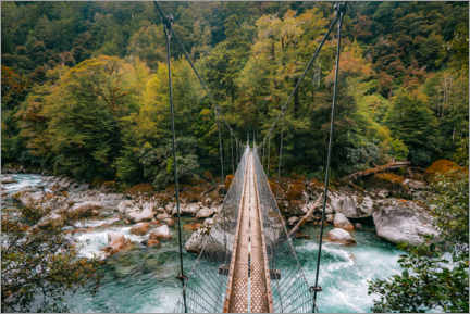 Premium poster Suspension bridge in the Fiordlands of New Zealand