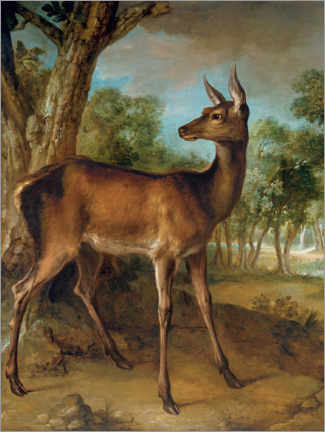 Wall sticker  The watchful doe - Jean-Baptiste Oudry