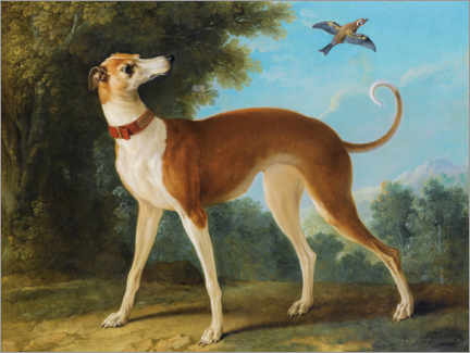 Gallery print  Greyhound in a landscape - Jean-Baptiste Oudry