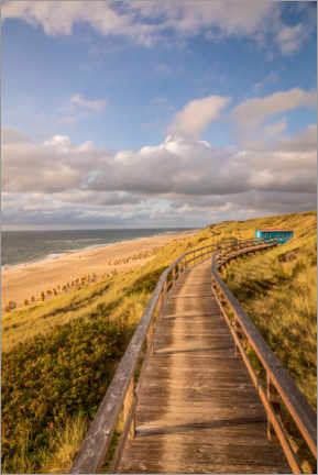 Aluminium print  Path on the dunes on the beach on Sylt - Christian Müringer