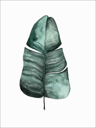 Foam board print  Botanical Illustration   Banana Leaf - Mantika Studio