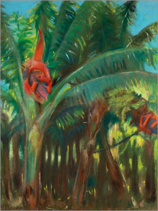 Foam board print  The banana forest - Kazimierz Stabrowski