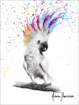 Premium poster Proud cockatoo