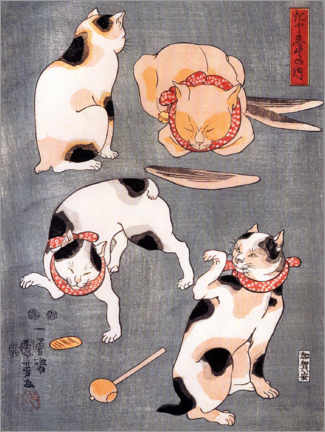 Premium poster Four cats adopting different feline postures