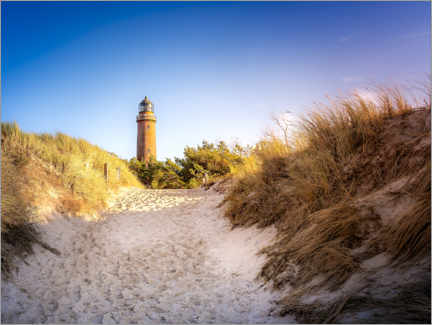 Premium poster Lighthouse on the beach on the Darss