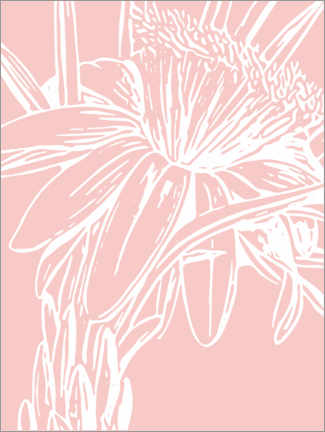 Aluminium print  Botanical drawing in pink - apricot and birch