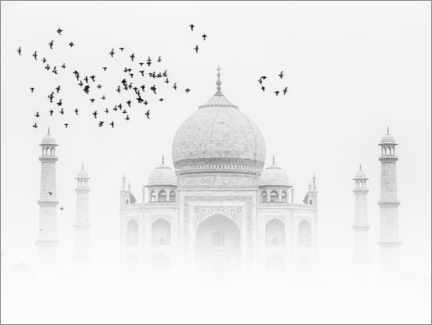 Canvas print  Birds over the Taj Mahal - Thomas Herzog