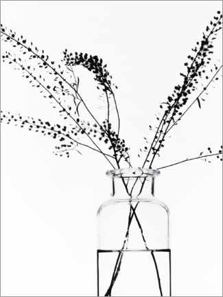 Wood print  Bottle with branches I - Magda Izzard