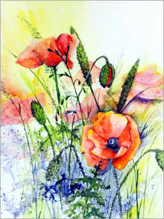Canvas print  Wild poppies - Burkhard Posanski