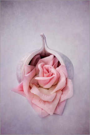 Wood print  Still life with rose - INA FineArt