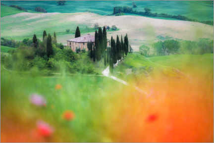 Premium poster Tuscany country house in the flower field