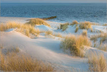 Foam board print  Dunes on Sylt - Christian Müringer