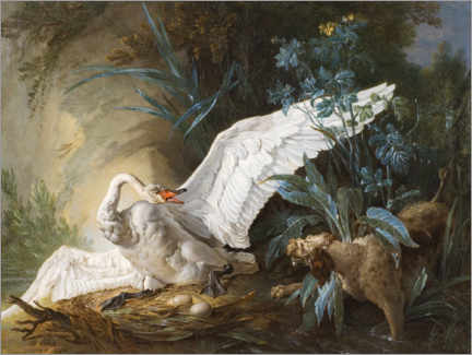 Acrylic print  Dog surprises a swan on its nest - Jean-Baptiste Oudry