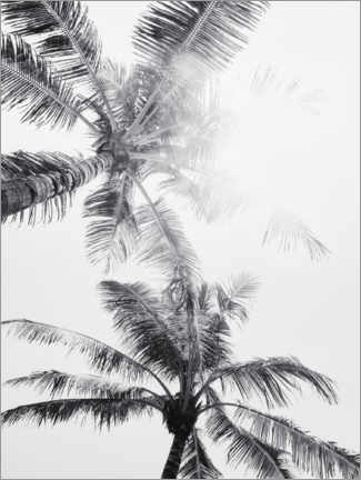 Premium poster  Palm trees of Bali I - Magda Izzard