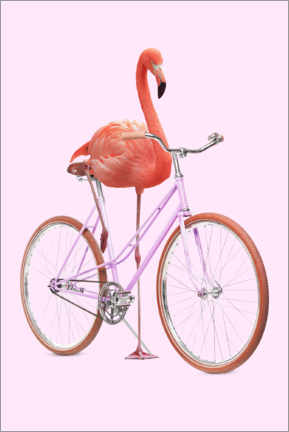 Premium poster  Flamingo Bike - Jonas Loose