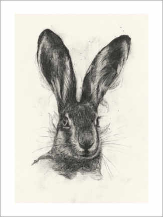 Premium poster  Brown hare - Richard Stark