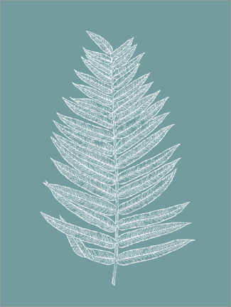 Gallery print  Palm leaf botany - apricot and birch