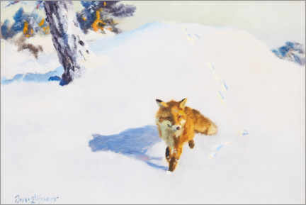 Canvas print  Fox in the winter landscape - Bruno Andreas Liljefors