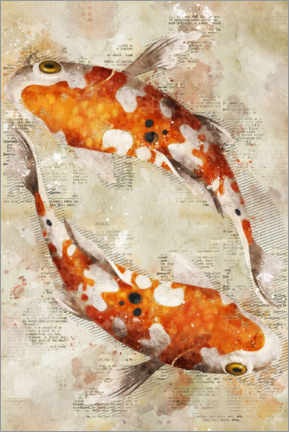 Premium poster  Koi Fishes - Durro Art
