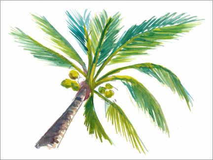 Premium poster Tropical palm leaf