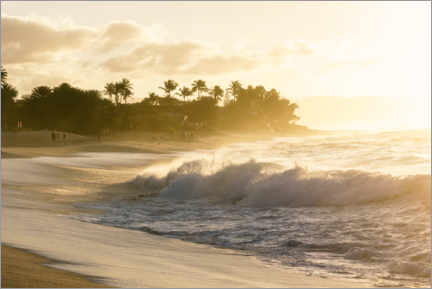 Premium poster  Golden light on the beach in Hawaii - Road To Aloha