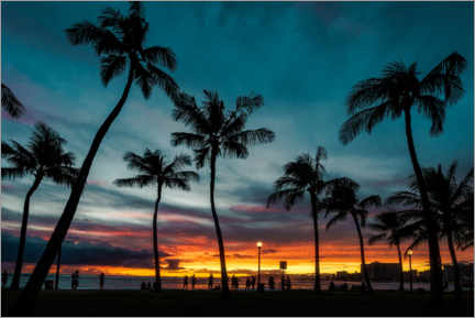 Premium poster Palm trees in the sunset, Hawaii