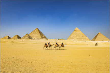Premium poster  Pyramids of Giza with camel caravan - HADYPHOTO