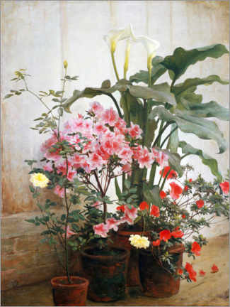 Gallery print  Side of a greenhouse - George Cochran Lambdin