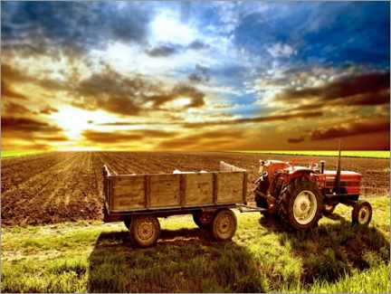 Canvas print  Tractor in the evening sun - Jörg Gamroth