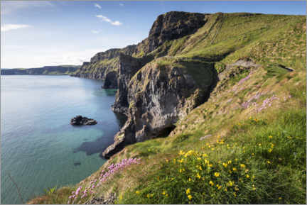 Canvas print  Calm bay in Ireland by the sea - The Wandering Soul
