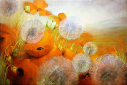 Premium poster Poppy meadow with dandelions