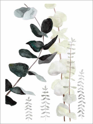 Premium poster Botanical illustration mix