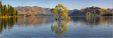 Premium poster  Lake Wanaka at sunrise - Markus Lange