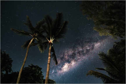 Wood print  Palm trees against a starry sky and the Milky Way - Road To Aloha