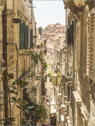 Wood print  Streets of Dubrovnik - Mike Clegg Photography